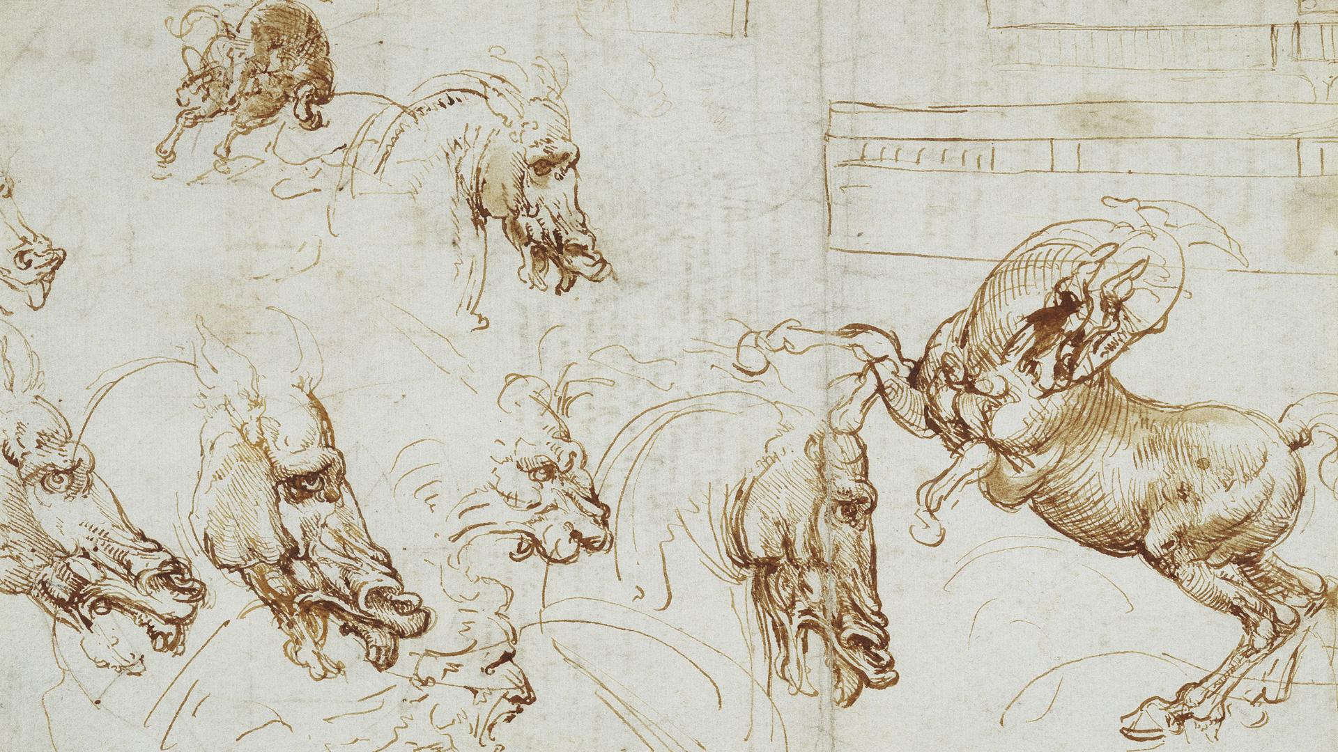 Leonardo – The Science behind the Art